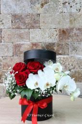 Flowers 2400